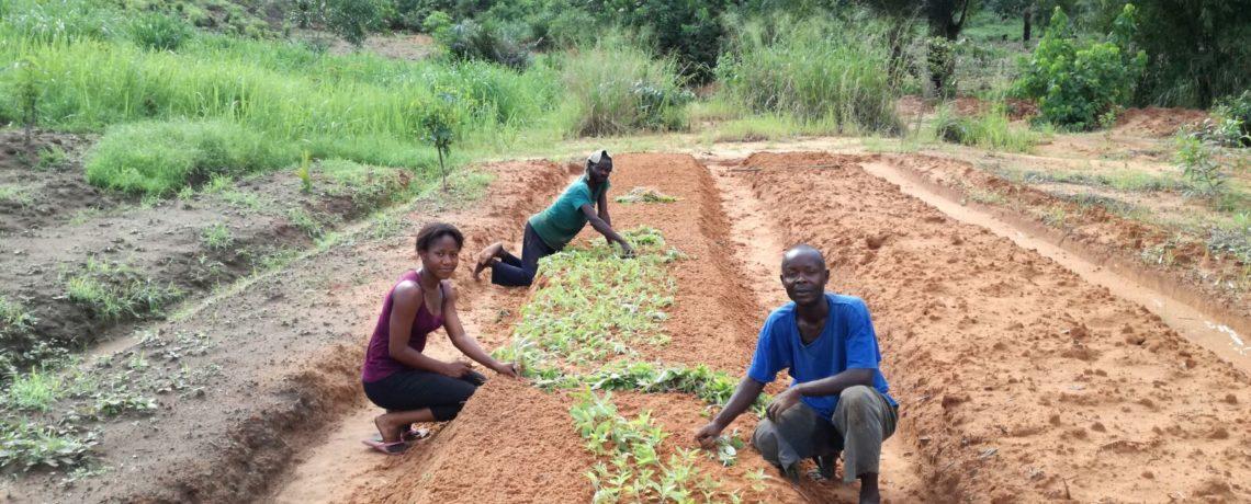 OIKOS ONLUS – Capo progetto – Repubblica Democratica del Congo