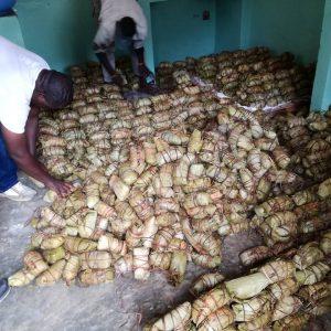pacchetti-manioca